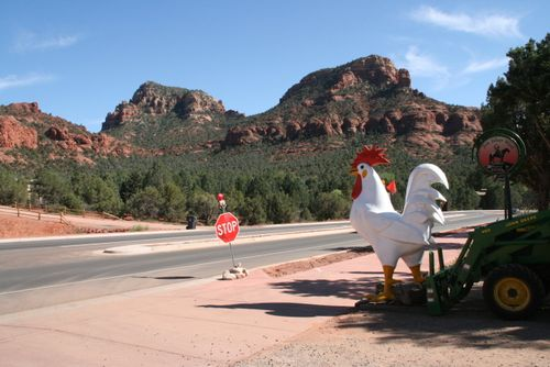 4:21chickeninSedona