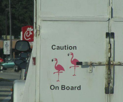 FlamingosonBoard(ChristineC)