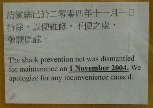 Shark_net_sign(michaelB)