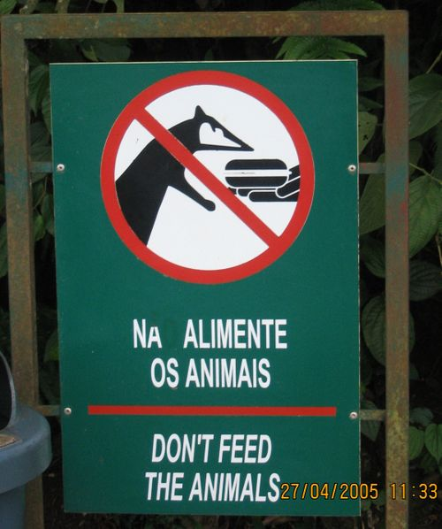 Feedinganimals(yuval)argentina