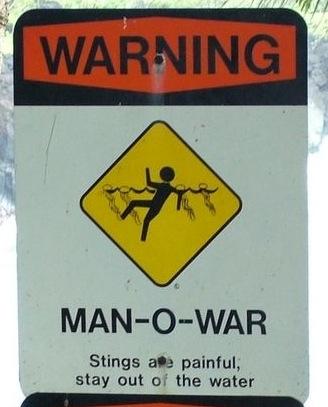 Manowar(LauraS)