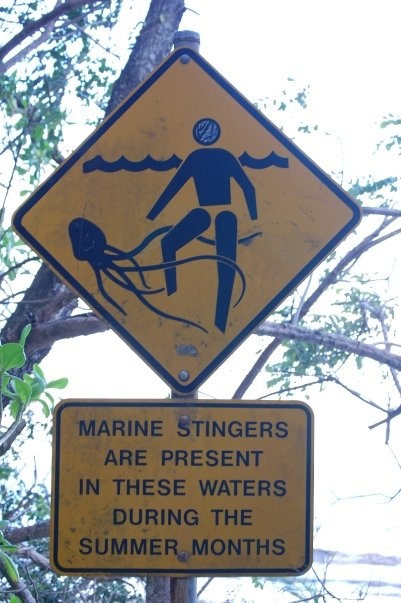Marinestingers(OzKristenS)