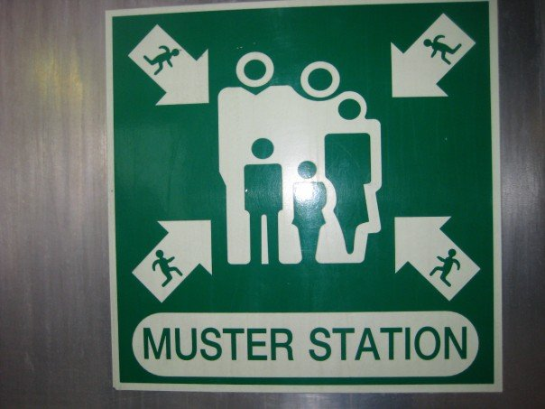 Muster station(KathrynNZ)