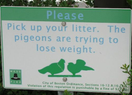 Fatpigeons(MargoO)