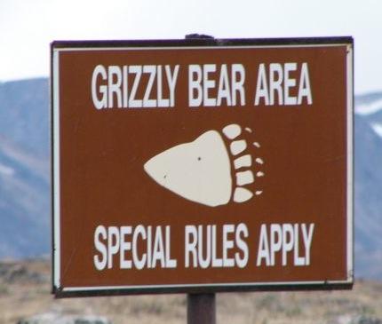 Grizzlyrules(JackS)