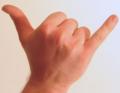Shaka-sign