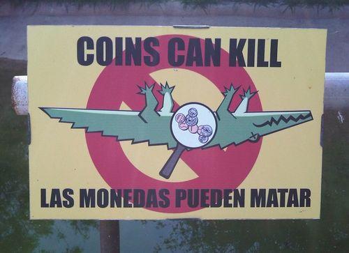 Coinscankillcrocs(AlexN)