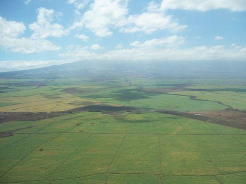 HaleakalaMaunalei