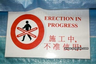 Erection(DanaviaEngrish)