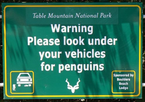 PenguinSafety(JohnH)