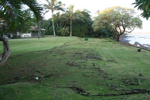 Tsunami2011a