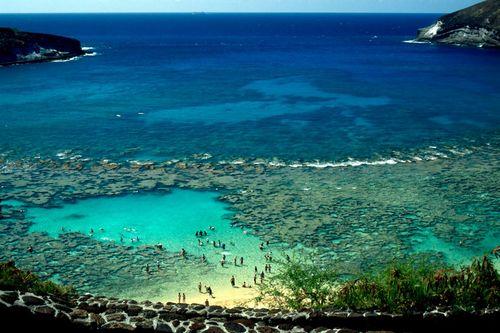 Famous-Hanauma-Bay-Oahu