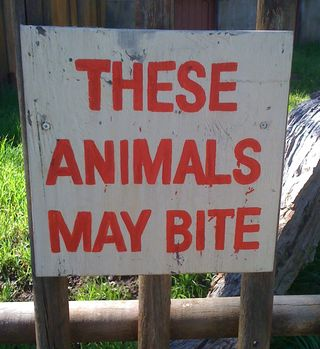 AnimalsMayBite(Xina)