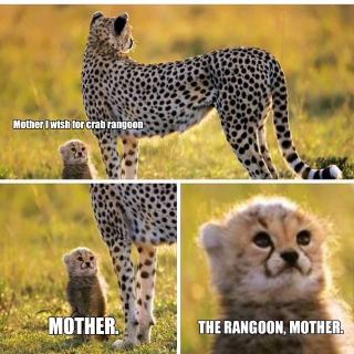 Rangoon mother