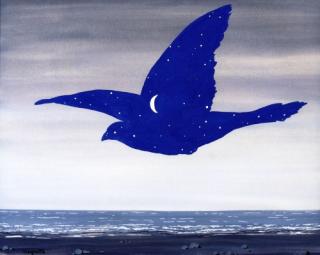 Magrittebird