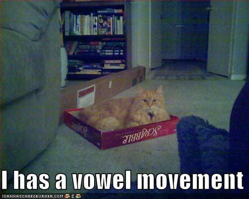 Funnypicturescatscrabbleboxvowelmov